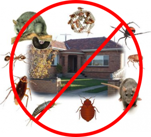 commercial pest exterminators