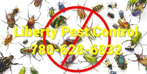liberty pest control edmonton